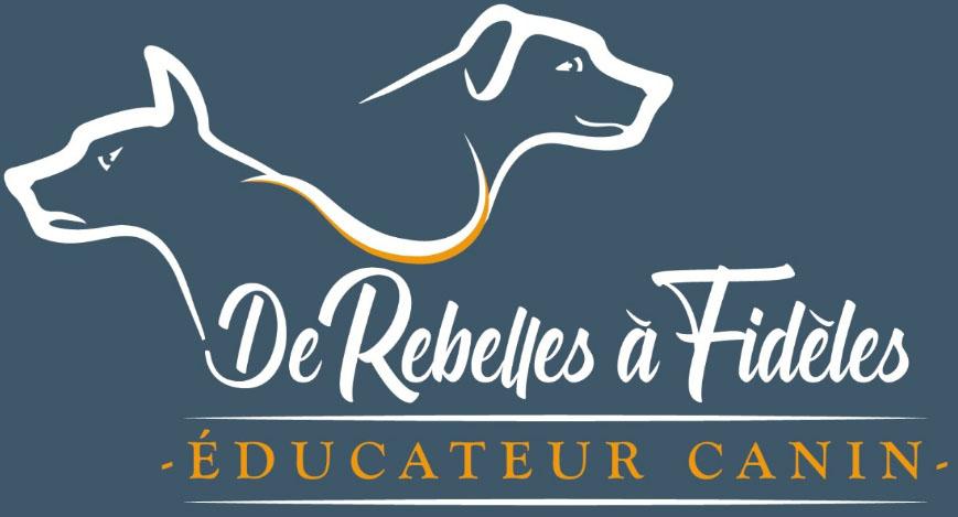 De rebelles à fidèles